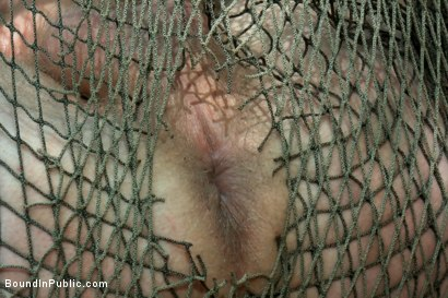 Photo number 12 from You shore got a purdy mouth boy... shot for Bound in Public on Kink.com. Featuring Logan Stevens, Christian Wilde and Josh West in hardcore BDSM & Fetish porn.