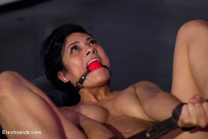 Photo number 9 from Beretta James gets her Asshole Shocked and her Pussy Fisted shot for Electro Sluts on Kink.com. Featuring Lorelei Lee and Beretta James in hardcore BDSM & Fetish porn.