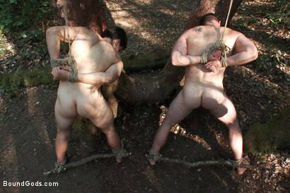 Photo number 5 from The Cabin Series #4 - Bound and Fucked in the Woods shot for Bound Gods on Kink.com. Featuring Ricky Sinz, Morgan Black and Tyler Alexander in hardcore BDSM & Fetish porn.