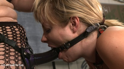 Photo number 7 from Bad Teacher shot for Chantas Bitches on Kink.com. Featuring Adrianna Nicole and Sabrina Fox in hardcore BDSM & Fetish porn.