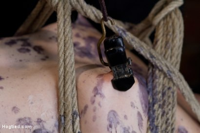 Photo number 7 from Blue Eyed Beauty Sarah Shevon Challenged Classic HogTied Style shot for Hogtied on Kink.com. Featuring Danny Wylde and Sarah Shevon in hardcore BDSM & Fetish porn.