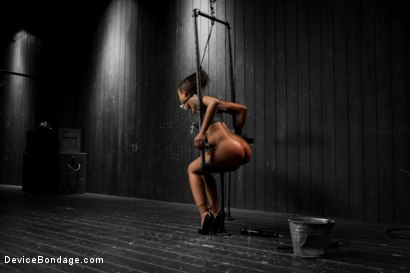 Photo number 4 from Skin Diamond gets roughed up by Jack Hammer in their first scene together shot for Device Bondage on Kink.com. Featuring Skin Diamond and Jack Hammer in hardcore BDSM & Fetish porn.