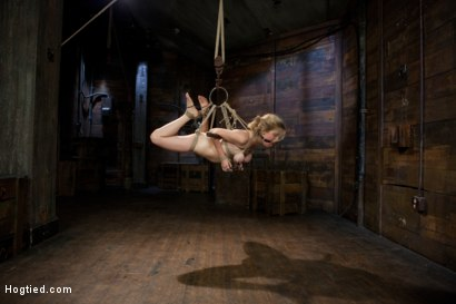 Photo number 8 from Innocent Penny Pax Faced Fucked by Mark Davis in Extreme Bondage shot for Hogtied on Kink.com. Featuring Penny Pax and Mark Davis in hardcore BDSM & Fetish porn.