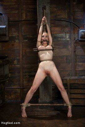 Photo number 4 from Innocent Penny Pax Faced Fucked by Mark Davis in Extreme Bondage shot for Hogtied on Kink.com. Featuring Penny Pax and Mark Davis in hardcore BDSM & Fetish porn.