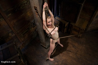 Photo number 6 from Innocent Penny Pax Faced Fucked by Mark Davis in Extreme Bondage shot for Hogtied on Kink.com. Featuring Penny Pax and Mark Davis in hardcore BDSM & Fetish porn.
