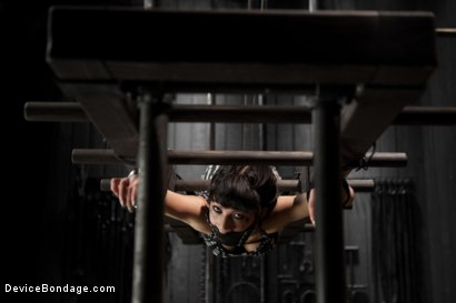 Photo number 8 from Dark and Sultry Asphyxia Noir Gets Her Pain Limits Put To The Test shot for Device Bondage on Kink.com. Featuring Asphyxia Noir in hardcore BDSM & Fetish porn.
