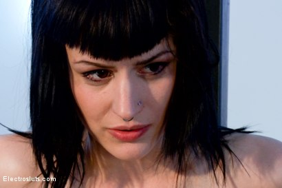 Photo number 8 from Wired Piercings equals Lots of Pain shot for Electro Sluts on Kink.com. Featuring Bobbi Starr and Katharine Cane in hardcore BDSM & Fetish porn.