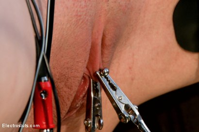 Photo number 12 from Wired Piercings equals Lots of Pain shot for Electro Sluts on Kink.com. Featuring Bobbi Starr and Katharine Cane in hardcore BDSM & Fetish porn.