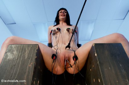 Photo number 15 from Wired Piercings equals Lots of Pain shot for Electro Sluts on Kink.com. Featuring Bobbi Starr and Katharine Cane in hardcore BDSM & Fetish porn.