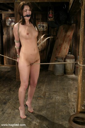 Photo number 13 from Faith Leon shot for Hogtied on Kink.com. Featuring Faith Leon in hardcore BDSM & Fetish porn.