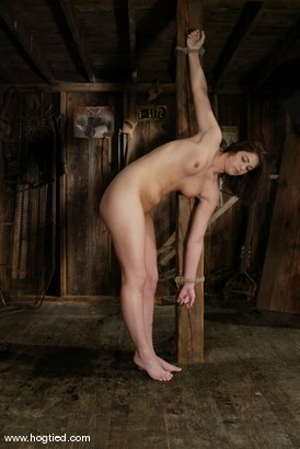 Photo number 4 from Faith Leon shot for Hogtied on Kink.com. Featuring Faith Leon in hardcore BDSM & Fetish porn.