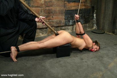 Photo number 15 from Isis Love shot for Hogtied on Kink.com. Featuring Isis Love in hardcore BDSM & Fetish porn.