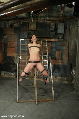 Photo number 12 from Isis Love shot for Hogtied on Kink.com. Featuring Isis Love in hardcore BDSM & Fetish porn.