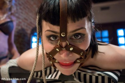 Photo number 5 from Cuckold Done The Lesbian Way! shot for Whipped Ass on Kink.com. Featuring Felony, Katharine Cane and Gia DiMarco in hardcore BDSM & Fetish porn.