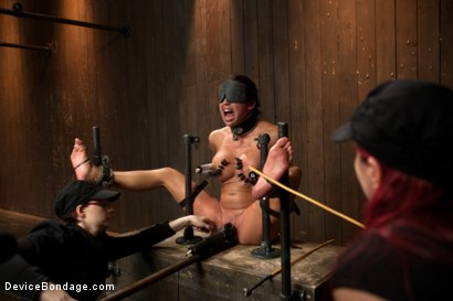 Photo number 11 from Mia Lelani - Big Titted Cunt Tormented - Complete Edited Live Show shot for Device Bondage on Kink.com. Featuring Mia Lelani, Mz Berlin and Bella Rossi in hardcore BDSM & Fetish porn.