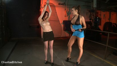 Photo number 2 from Nika's Bitch shot for Chantas Bitches on Kink.com. Featuring Nika Noire and Sasha Lexing in hardcore BDSM & Fetish porn.