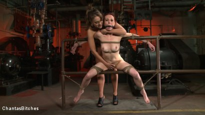 Photo number 12 from Nika's Bitch shot for Chantas Bitches on Kink.com. Featuring Nika Noire and Sasha Lexing in hardcore BDSM & Fetish porn.