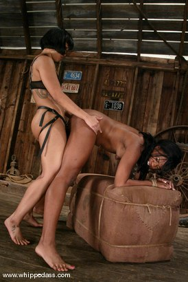 Photo number 14 from Sydnee Capri and DragonLily shot for Whipped Ass on Kink.com. Featuring Sydnee Capri and DragonLily in hardcore BDSM & Fetish porn.