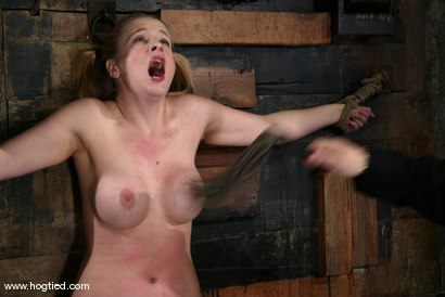 Photo number 13 from Anna Mills shot for Hogtied on Kink.com. Featuring Anna Mills in hardcore BDSM & Fetish porn.