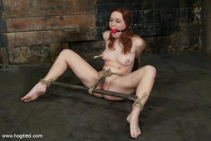 Photo number 7 from Smokie Flame shot for Hogtied on Kink.com. Featuring Smokie Flame in hardcore BDSM & Fetish porn.