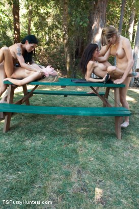 Photo number 7 from Curse of Dullkight Part Two:Destroy Them -A fuckfest with 4 Ladies! shot for TS Pussy Hunters on Kink.com. Featuring Eva Lin, Gia DiMarco, TS Foxxy and Rain DeGrey in hardcore BDSM & Fetish porn.