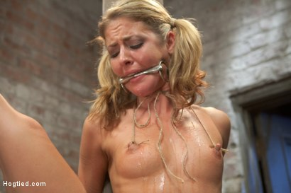 Photo number 15 from Welcome Sheena Shaw shot for Hogtied on Kink.com. Featuring Sheena Shaw in hardcore BDSM & Fetish porn.