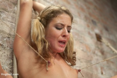 Photo number 19 from Welcome Sheena Shaw shot for Hogtied on Kink.com. Featuring Sheena Shaw in hardcore BDSM & Fetish porn.
