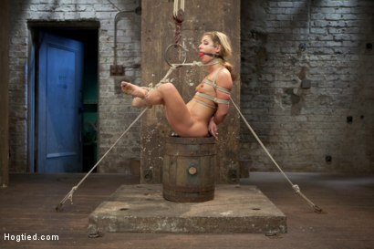 Photo number 7 from Welcome Sheena Shaw shot for Hogtied on Kink.com. Featuring Sheena Shaw in hardcore BDSM & Fetish porn.