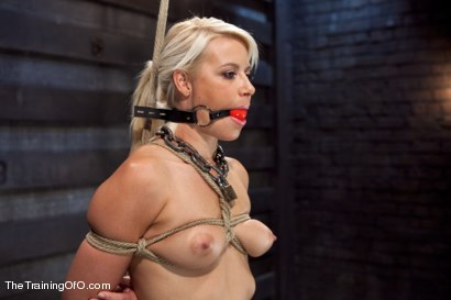 Photo number 11 from Training Anikka Albrite, Day 4 shot for The Training Of O on Kink.com. Featuring Derrick Pierce and Anikka Albrite in hardcore BDSM & Fetish porn.