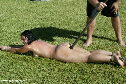 Photo number 15 from Cabo, the Return. Part 3 shot for Hogtied on Kink.com. Featuring Jenni Lee, Dee Williams, Princess Donna Dolore, Jenya and Sgt. Major in hardcore BDSM & Fetish porn.