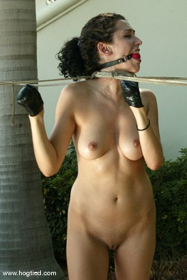 Photo number 4 from Cabo, the Return. Part 3 shot for Hogtied on Kink.com. Featuring Jenni Lee, Dee Williams, Princess Donna Dolore, Jenya and Sgt. Major in hardcore BDSM & Fetish porn.