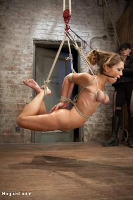 Photo number 5 from Audrey Rose Live Show - Complete Edited Version shot for Hogtied on Kink.com. Featuring Audrey Rose in hardcore BDSM & Fetish porn.