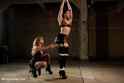 Photo number 2 from Damsel in Distress, Sheena Ryder, Submits to Felony's Heavy Hand shot for Whipped Ass on Kink.com. Featuring Felony and Sheena Ryder in hardcore BDSM & Fetish porn.