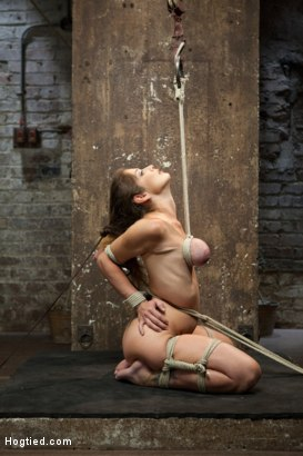 Photo number 2 from Felony - Amazing MILF Squirter shot for Hogtied on Kink.com. Featuring Felony in hardcore BDSM & Fetish porn.