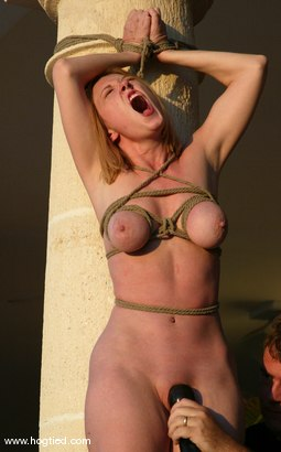 Photo number 2 from CABO, the Return. Part 10 - the Finale. shot for Hogtied on Kink.com. Featuring Jenni Lee, Dee Williams, Princess Donna Dolore, Jenya and Sgt. Major in hardcore BDSM & Fetish porn.