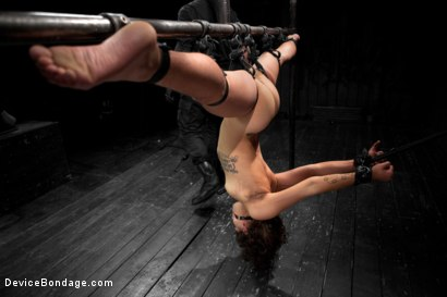 Photo number 20 from Wild hairy whore gets tamed. Bianca Stone: exotic, flexible treat! shot for Device Bondage on Kink.com. Featuring Bianca Stone and Sebastian Keys in hardcore BDSM & Fetish porn.
