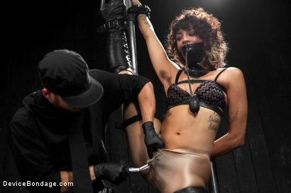 Photo number 7 from Wild hairy whore gets tamed. Bianca Stone: exotic, flexible treat! shot for Device Bondage on Kink.com. Featuring Bianca Stone and Sebastian Keys in hardcore BDSM & Fetish porn.