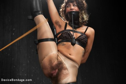 Photo number 8 from Wild hairy whore gets tamed. Bianca Stone: exotic, flexible treat! shot for Device Bondage on Kink.com. Featuring Bianca Stone and Sebastian Keys in hardcore BDSM & Fetish porn.