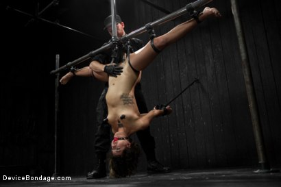 Photo number 19 from Wild hairy whore gets tamed. Bianca Stone: exotic, flexible treat! shot for Device Bondage on Kink.com. Featuring Bianca Stone and Sebastian Keys in hardcore BDSM & Fetish porn.