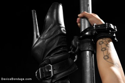Photo number 6 from Wild hairy whore gets tamed. Bianca Stone: exotic, flexible treat! shot for Device Bondage on Kink.com. Featuring Bianca Stone and Sebastian Keys in hardcore BDSM & Fetish porn.