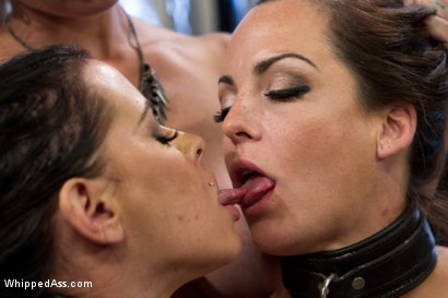 Photo number 11 from Obedient Lesbian Whores shot for Whipped Ass on Kink.com. Featuring Brandy Aniston, Felony and Bryn Blayne in hardcore BDSM & Fetish porn.