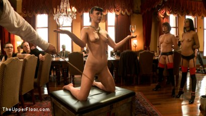Photo number 4 from Slave Petition: Katharine Cane shot for The Upper Floor on Kink.com. Featuring Lyla Storm, Katharine Cane, Odile, Mickey Mod and Maestro Stefanos in hardcore BDSM & Fetish porn.