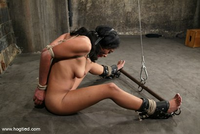 Photo number 4 from Sophia and Princess Donna Dolore shot for Hogtied on Kink.com. Featuring Sophia and Princess Donna Dolore in hardcore BDSM & Fetish porn.
