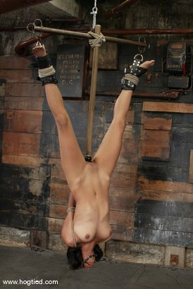 Photo number 6 from Sophia and Princess Donna Dolore shot for Hogtied on Kink.com. Featuring Sophia and Princess Donna Dolore in hardcore BDSM & Fetish porn.