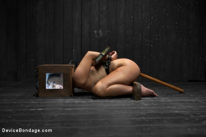 Photo number 10 from Head Case shot for Device Bondage on Kink.com. Featuring Ashli  Orion in hardcore BDSM & Fetish porn.