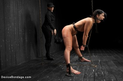 Photo number 16 from Head Case shot for Device Bondage on Kink.com. Featuring Ashli  Orion in hardcore BDSM & Fetish porn.