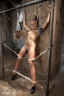 Photo number 2 from Skin Diamond Live Show - Complete Edited Version  shot for Hogtied on Kink.com. Featuring Skin Diamond in hardcore BDSM & Fetish porn.
