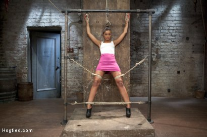 Photo number 5 from Skin Diamond Live Show - Complete Edited Version  shot for Hogtied on Kink.com. Featuring Skin Diamond in hardcore BDSM & Fetish porn.