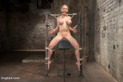 Photo number 16 from Bent shot for Hogtied on Kink.com. Featuring Dee Williams in hardcore BDSM & Fetish porn.