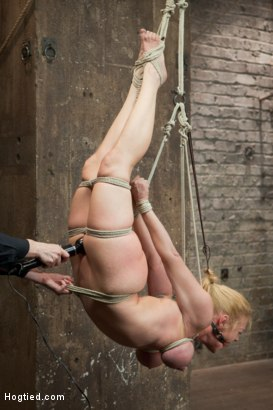 Photo number 5 from Bent shot for Hogtied on Kink.com. Featuring Dee Williams in hardcore BDSM & Fetish porn.
